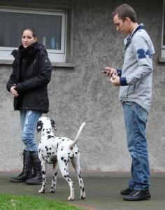 bild3_welpentreffen_november_2010