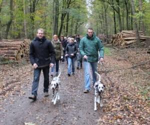 bild1_c-wurf_november2012
